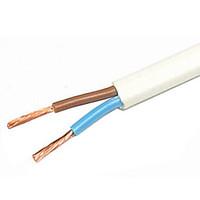 Провод соединительный ПВС 2х2.5 (1п.м)